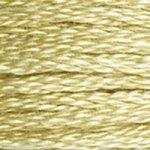 3046 Md Yellow Beige